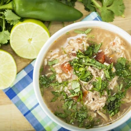 PSMF Recipes: Zesty Chicken Soup and more for the Protein Sparing Modified Fast